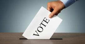 33727-votingpicture1200.1200w.tn